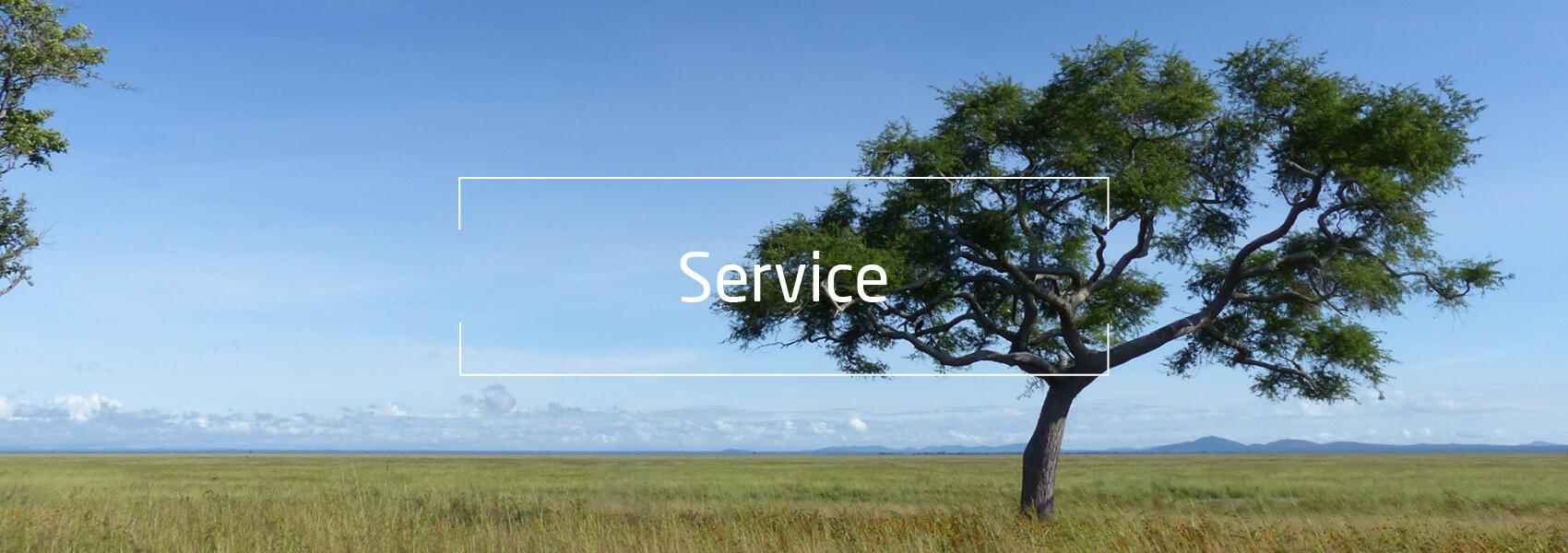 Landschaft Tansania, Text: Service